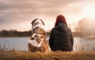 woman sitting with dog looking at a lake next to the city